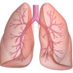 Bolile respiratorii